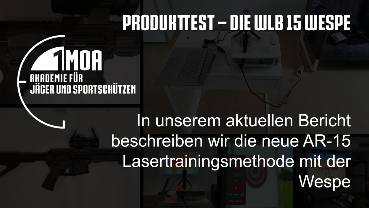 Titelbild-Produkttest-WLB-15-Wespe