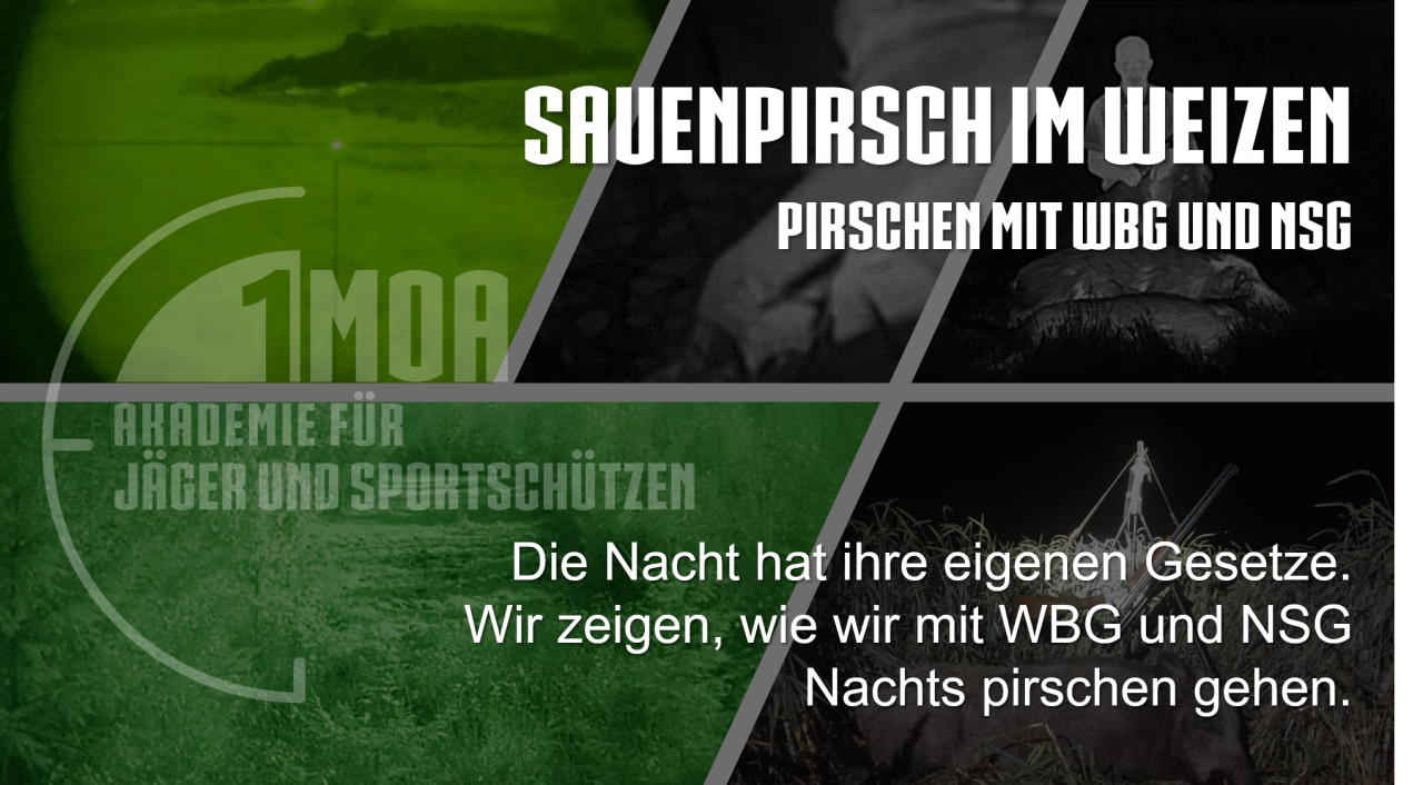 Titelbild-Sauenpirsch-mit-WBG-und-NSG