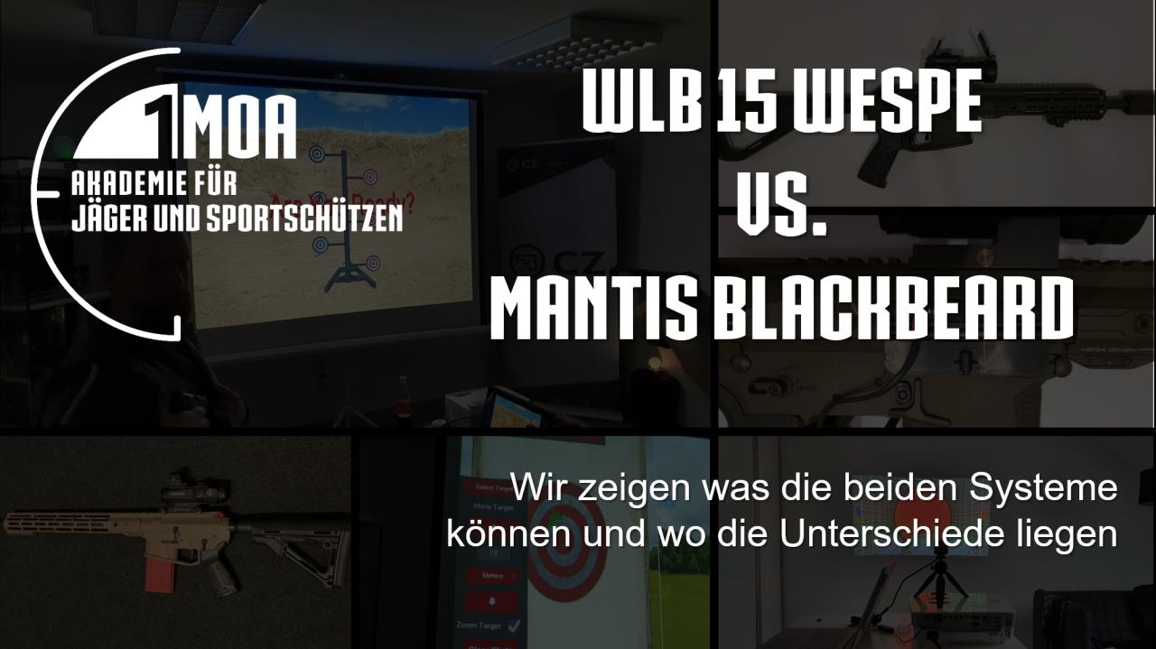Titelbild-BlackBeard-vs-Wespe
